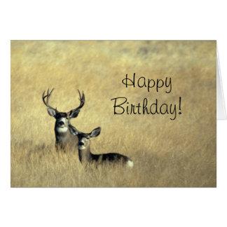 Rotwild mit Geweih-alles- Gute zum Geburtstagtag Grußkarte