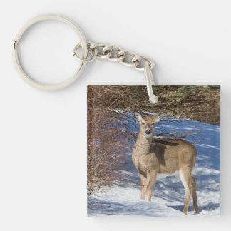 Rotwild mit Schnee und Bürste Schlüsselanhänger