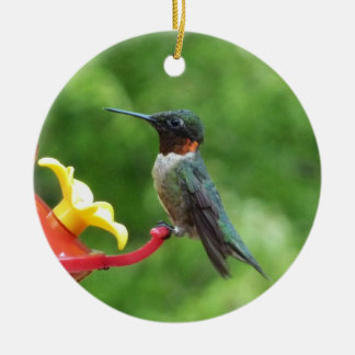 Rubin-Throated Kolibri-Vogel-Fotografie Keramik Ornament