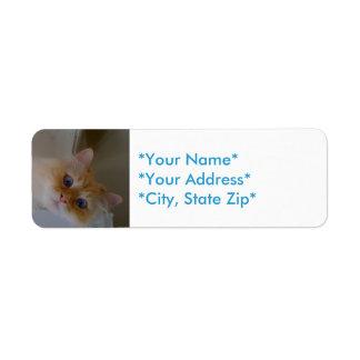 Rücksendeadressen-Aufkleber Rückversand-Adressaufkleber