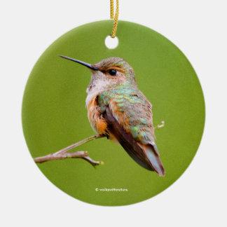 Rufous Kolibri, der in der Kalifornien-Flieder Rundes Keramik Ornament