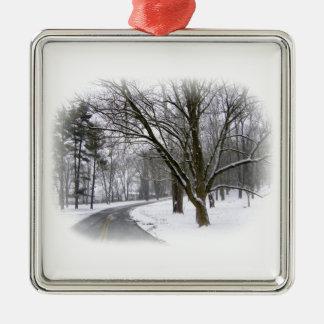 Ruhiger Winter-Antrieb Silbernes Ornament