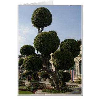 Runde Bäume Karte