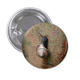 Runder Knopf der Schnecke Runder Button 2,5 Cm