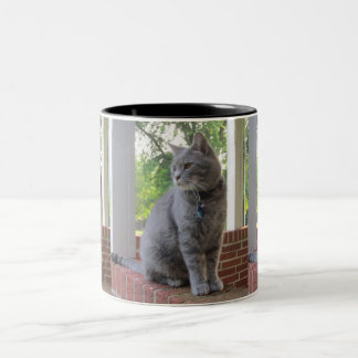 Russ die Katzen-Tasse Zweifarbige Tasse