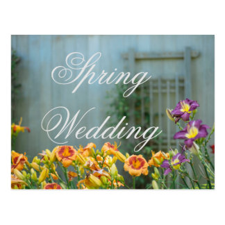 Rustikale gelbe Frühlings-Hochzeit Postkarte