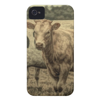 Rustikale Molkerei-Tierbrown-Schweizer-Kuh iPhone 4 Etuis