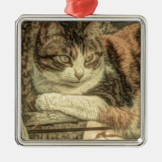 Rustikale Silbernes Ornament