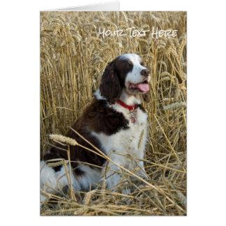 Rustikales Weizen-Feld und sitzender Hund Karte