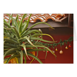 Saftige Gartengrußkarte: Glückliches Aloedays! Grußkarte
