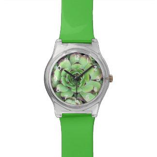 Saftiges Pflanzen-Beschaffenheits-Muster Uhr
