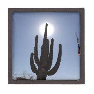 Saguarokaktus mit Sonnehintergrund Schmuckkiste