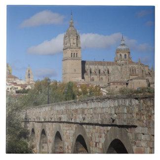 Salamanca-Kathedralen, angesehen von Puente Romano Fliese