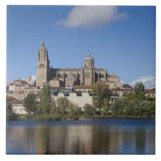 Salamanca-Kathedralen und Stadt 2 Keramikfliese