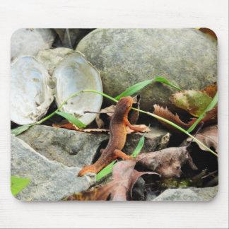 Salamander-Mausunterlage Mauspads