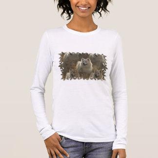 Samoyed-Hundezucht-langer Hülsen-T - Shirt