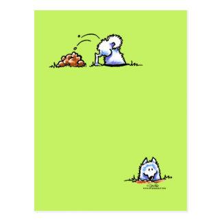 Samoyed kann u-Grabung es Postkarte
