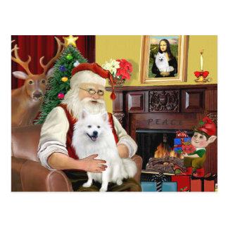 Sankt amerikanischer Eskimohund Postkarte