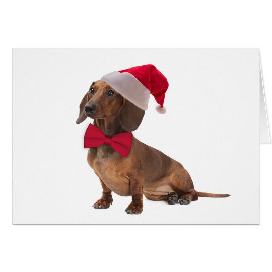 Sankt-Dackel-Weihnachtskarte Grußkarte