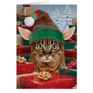Sankt Elf-Katze Weihnachtskarte Karte