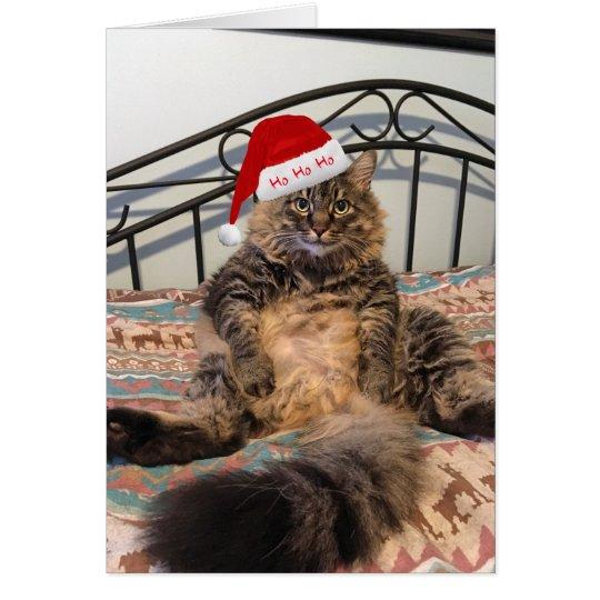 Sankt-Katze erhält Plätzchen-Weihnachtskarte Karte