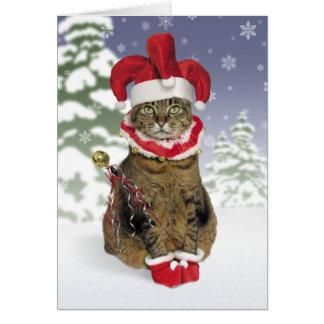Sankt-Spaßvogel-Katzen-Weihnachtskarten Karte