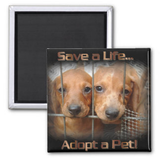 sauvez une vie adoptent un aimant de carré d'anima