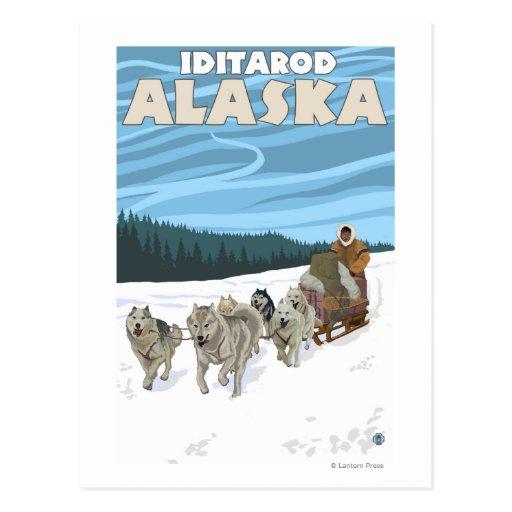 Scène Sledding de chien - Iditarod, Alaska Cartes Postales