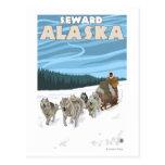 Scène Sledding de chien - Seward, Alaska Carte Postale