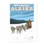 Scène Sledding de chien - Wrangell, Alaska Cartes Postales