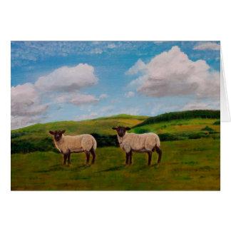 Schafe können sicher weiden lassen karte