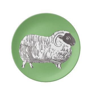 Schafe mit grüner dekorativer Porzellan-Platte Teller