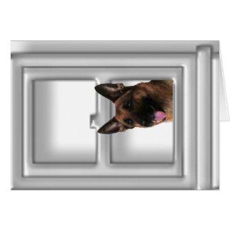 Schäferhund, der heraus die Fenster-Karte schaut Karte