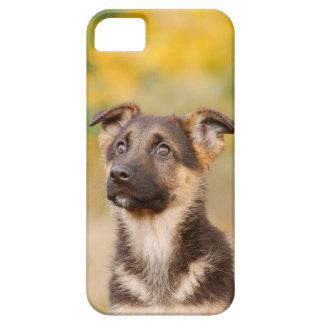 Schäferhund des Herbstes Schutzhülle Fürs iPhone 5