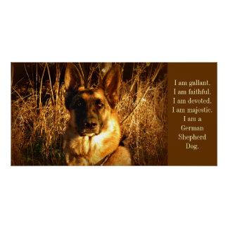 Schäferhund Poster