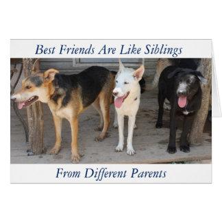 Schäferhund-Rettungs-Freundschaftskarte Karte