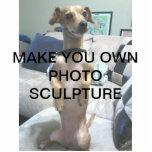Schaffen Sie Ihre eigene Foto-Skulptur Acryl Ausschnitte