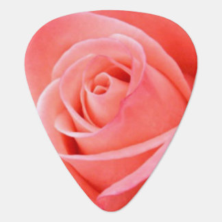 Scharf-allein rosa Rosen-Bild Plektron