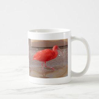 Scharlachrot IBIS Kaffeetasse