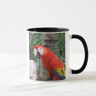 Scharlachrot Macaw-Fotografie- Tasse