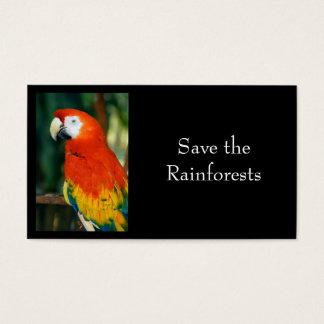 Scharlachrot Macaw- Visitenkarte