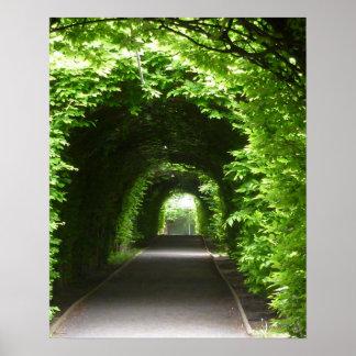 Schattierte botanischer Garten-Laube Poster