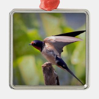 Scheunen-Schwalben-Vogel-Foto Silbernes Ornament
