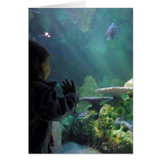 Schildkröte-Behälter-Zuschauer Grußkarte