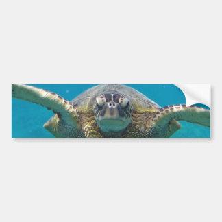 Schildkröte Hawaiis Honu Autoaufkleber