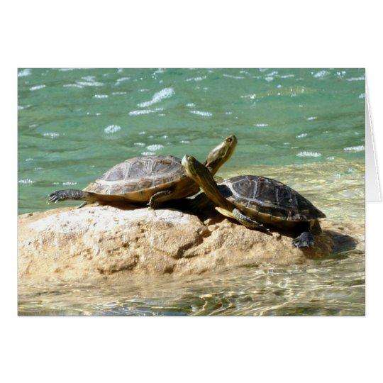 Schildkröte-Liebe Grußkarte