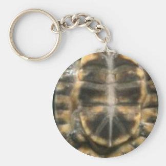 Schildkröte-Muschel Schlüsselanhänger