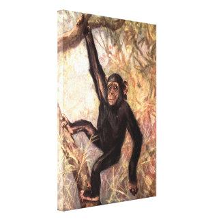Schimpanse-Affe durch CER Schwan, Vintage wilde Leinwanddruck