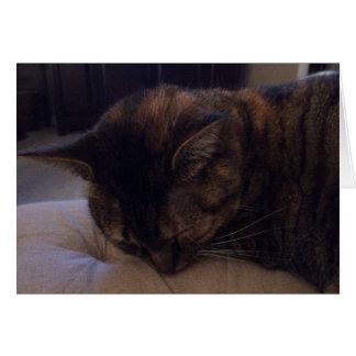 Schlafenkatze, Karte