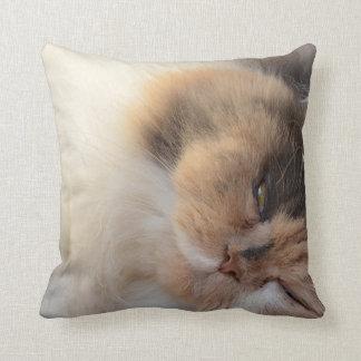 Schlafenkatze Zierkissen